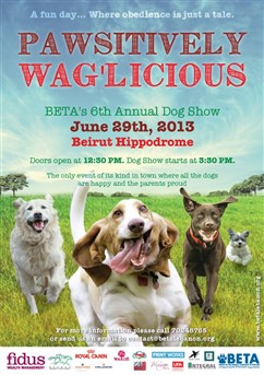 Fidus News - Beta Dog Show Festival